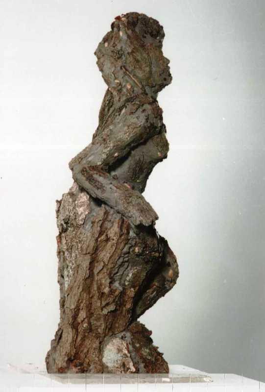 Preuménia dans le chêne de Dodone