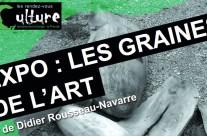 Nouvelle expo «Les graines de l'Art»
