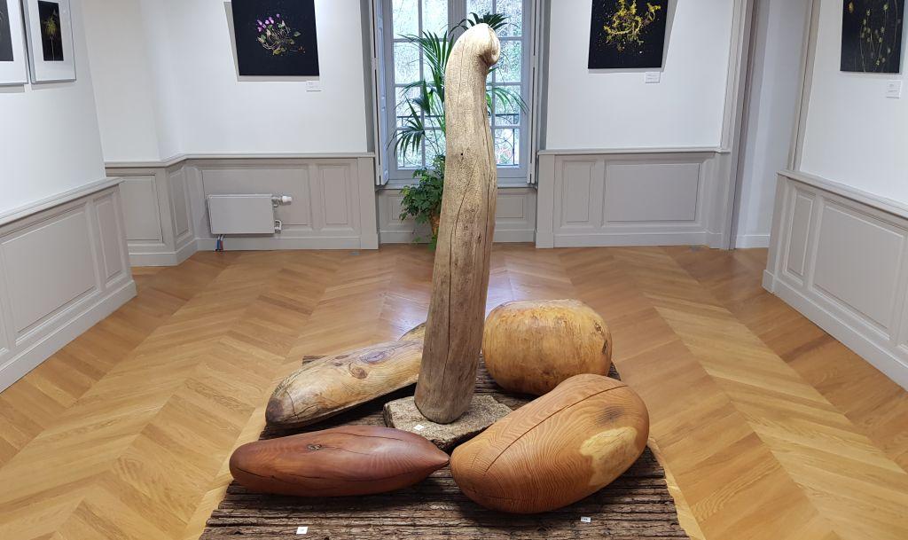 Exposition Les graines de l'art au domaine de Montauger